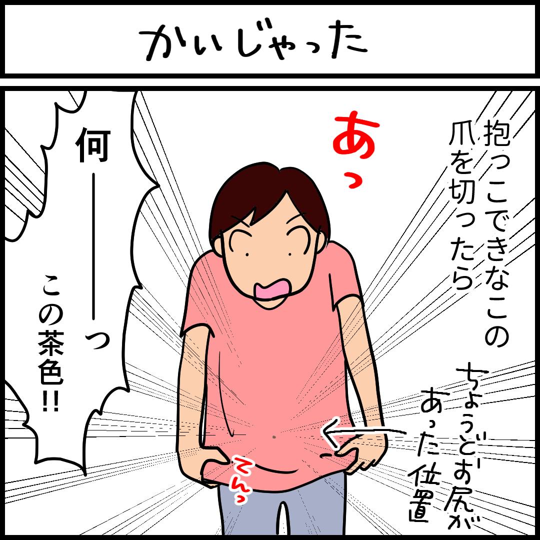 かいじゃった-1.png